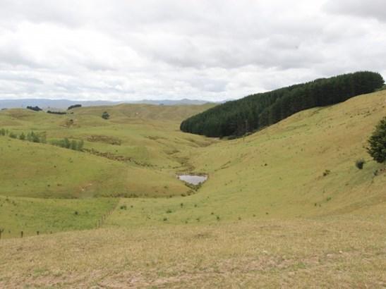 498 Ridge Road North, Pahiatua, Tararua - NZL (photo 5)
