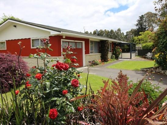 53 Gregg Street, Dannevirke, Tararua - NZL (photo 1)