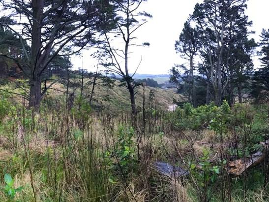 Lookout Pahiatua Track Road, Aokautere, Palmerston North - NZL (photo 2)