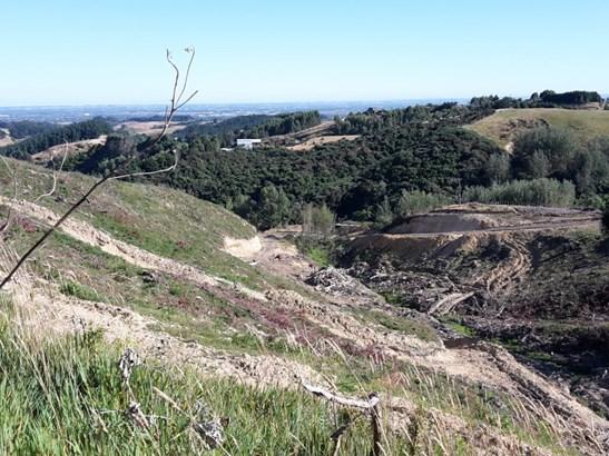 Lookout Pahiatua Track Road, Aokautere, Palmerston North - NZL (photo 3)