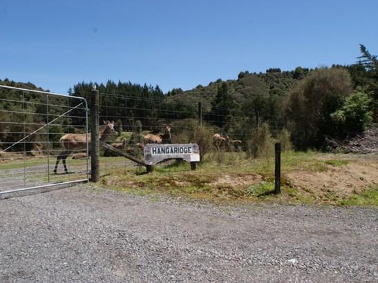 3500 State Highway 4, Raurimu, Ruapehu - NZL (photo 2)