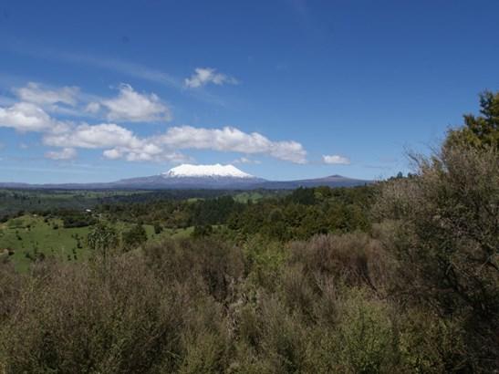 3500 State Highway 4, Raurimu, Ruapehu - NZL (photo 3)
