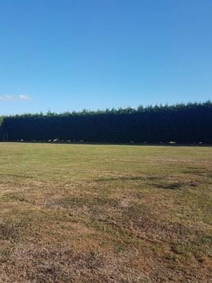 - Wake Place, Aokautere, Palmerston North - NZL (photo 5)