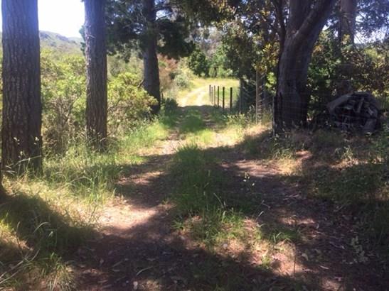 - Ymca Road, Mahia, Wairoa - NZL (photo 2)