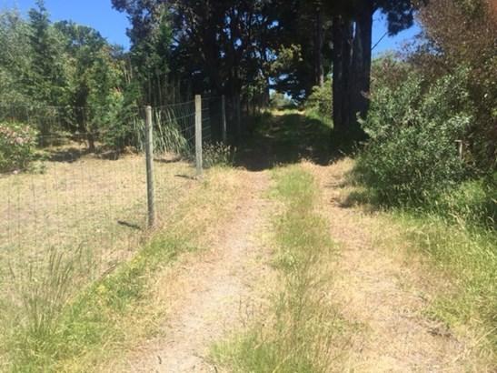 - Ymca Road, Mahia, Wairoa - NZL (photo 3)