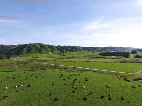849 Makomako Road, Pahiatua, Tararua - NZL (photo 5)
