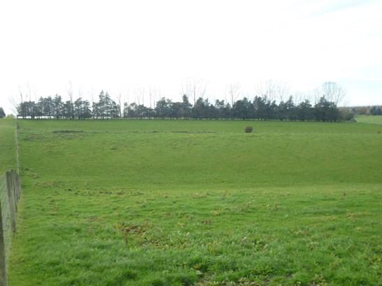 - Greenvale Road, Geraldine, Timaru - NZL (photo 4)