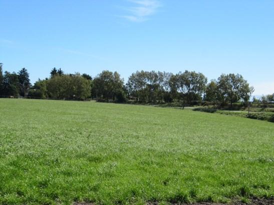 547 Claremont Road, Timaru - NZL (photo 1)