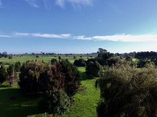 15 Te Poi Road, Te Poi, Matamata-piako - NZL (photo 5)