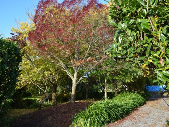 3 Mole Street, Greytown, South Wairarapa - NZL (photo 1)