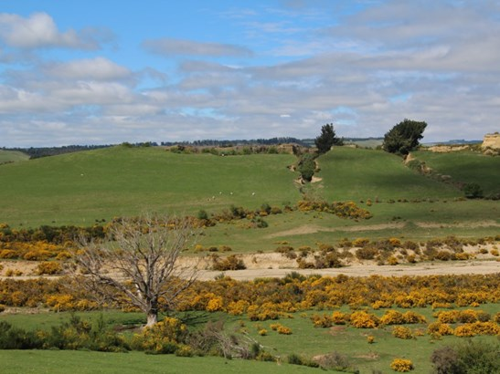 86 Bushy Creek Road, Oamaru, Waitaki - NZL (photo 3)