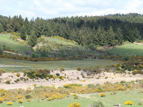 86 Bushy Creek Road, Oamaru, Waitaki - NZL (photo 5)