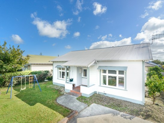 19 Manson Street, Terrace End, Palmerston North - NZL (photo 1)
