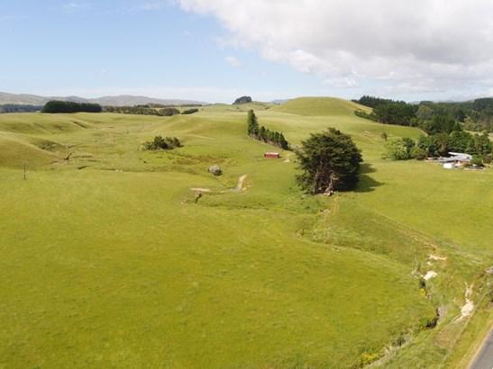127 North Road , Eketahuna, Tararua - NZL (photo 1)