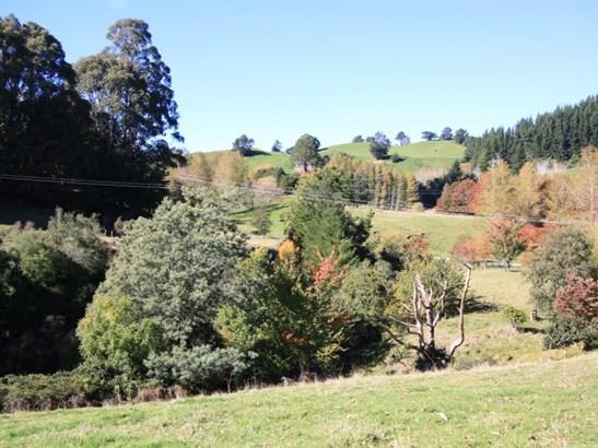 48 Little Bush Road, Puketitiri, Hastings - NZL (photo 4)
