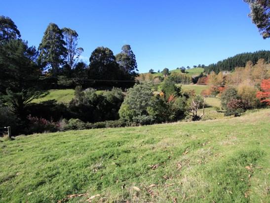 48 Little Bush Road, Puketitiri, Hastings - NZL (photo 5)