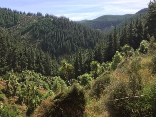 Kakahu, Timaru - NZL (photo 2)