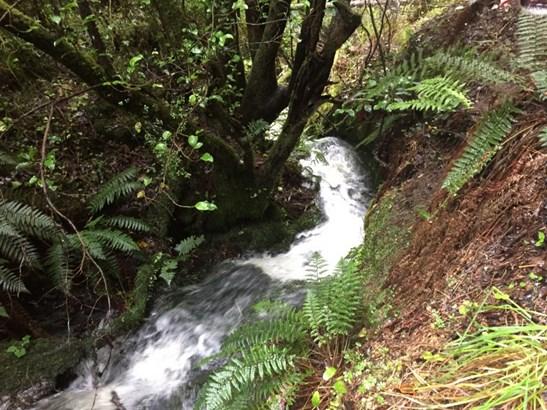 Kakahu, Timaru - NZL (photo 3)