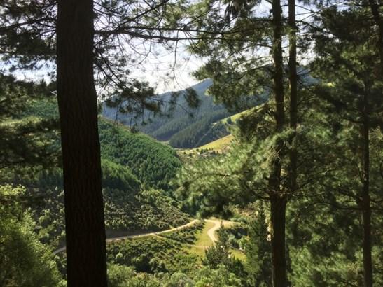 Kakahu, Timaru - NZL (photo 4)