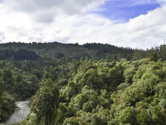 . State Highway 4, Raurimu, Ruapehu - NZL (photo 3)