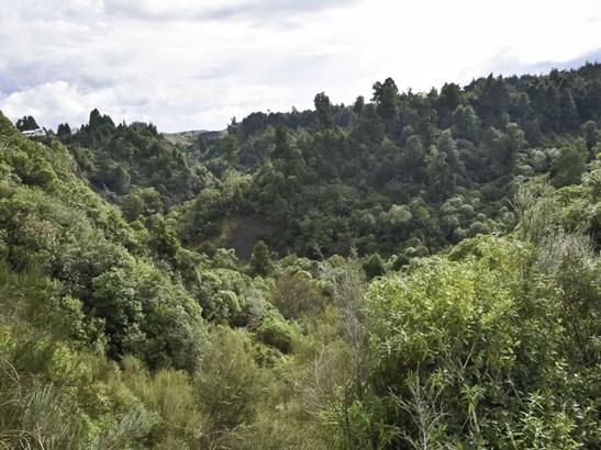 . State Highway 4, Raurimu, Ruapehu - NZL (photo 4)
