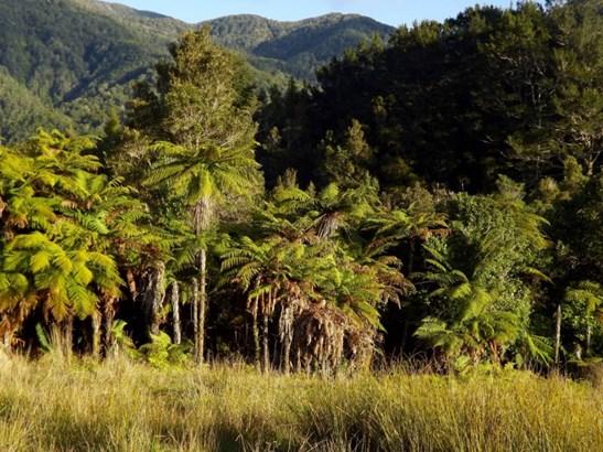 875 Umere Road, Karamea, Buller - NZL (photo 4)