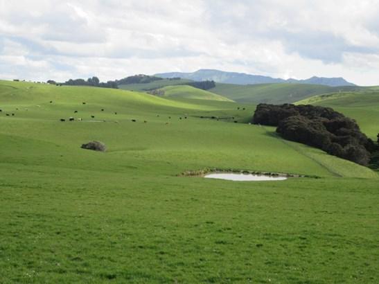 512 Nicholls Road, Flemington, Central Hawkes Bay - NZL (photo 2)