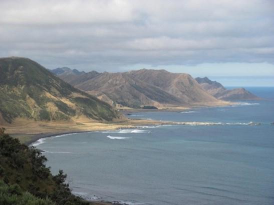 411 Tora Farm Settlement Road, Tora, South Wairarapa - NZL (photo 3)