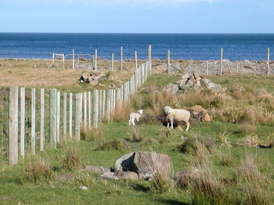 411 Tora Farm Settlement Road, Tora, South Wairarapa - NZL (photo 5)