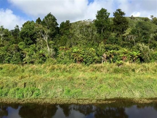 - Kongahu Swamp Road, Little Wanganui, Buller - NZL (photo 2)