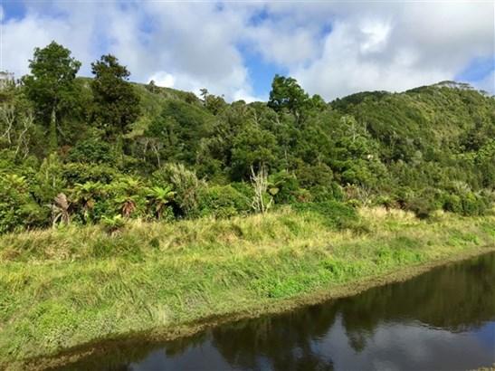 - Kongahu Swamp Road, Little Wanganui, Buller - NZL (photo 3)