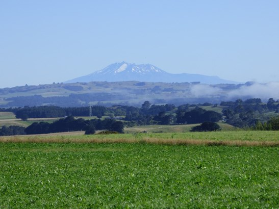 Lot 22 Mt Biggs Road, Halcombe, Manawatu - NZL (photo 2)