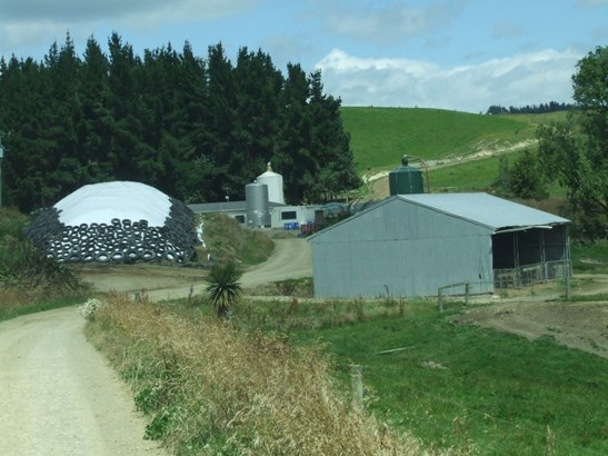 3885 Waimate Highway, Waimate - NZL (photo 5)