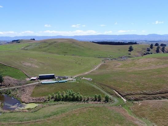 - Tuturewa Road  , Dannevirke, Tararua - NZL (photo 5)