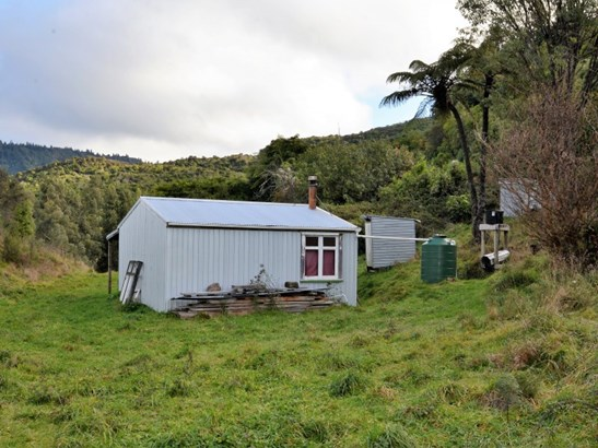 00 State Highway 38, Tuai, Wairoa - NZL (photo 3)