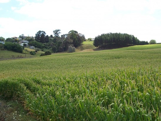 . Harpers Avenue, Otorohanga - NZL (photo 1)