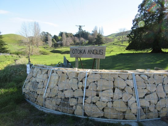 672 Ngahape Road, Waipukurau, Central Hawkes Bay - NZL (photo 1)