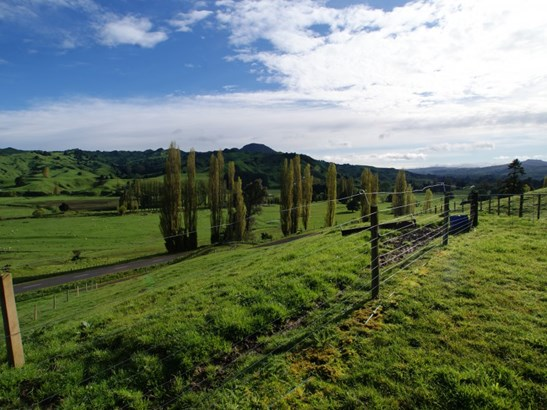 436 Taringamotu Road, Taumarunui, Ruapehu - NZL (photo 3)