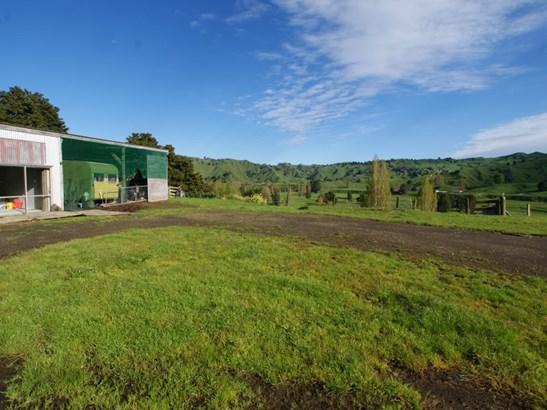 436 Taringamotu Road, Taumarunui, Ruapehu - NZL (photo 5)