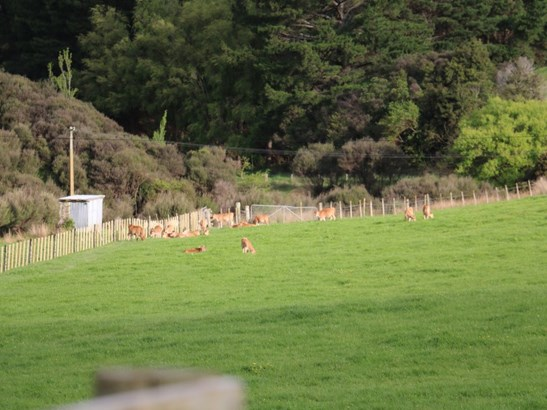 165 Albert Road, Tokomaru, Palmerston North - NZL (photo 3)