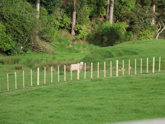 165 Albert Road, Tokomaru, Palmerston North - NZL (photo 4)