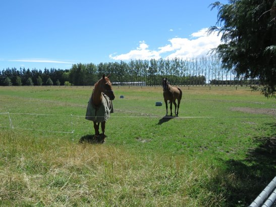 16 Mitcham Road, Ashburton - NZL (photo 4)