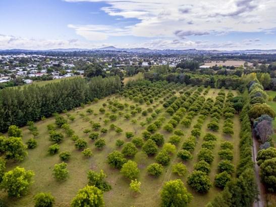 48b Nursery Road, Masterton - NZL (photo 1)