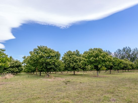 48b Nursery Road, Masterton - NZL (photo 5)