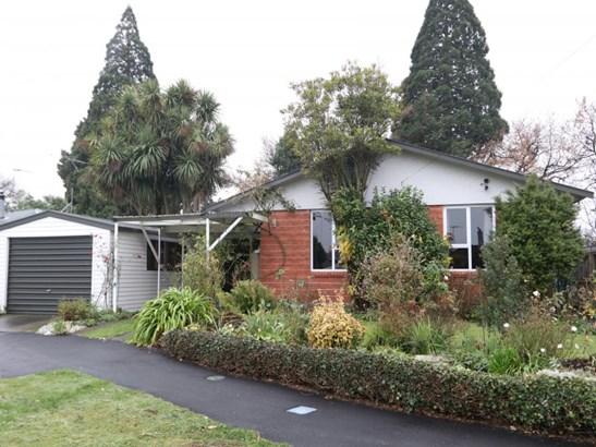 39 Davis Crescent, Netherby, Ashburton - NZL (photo 1)