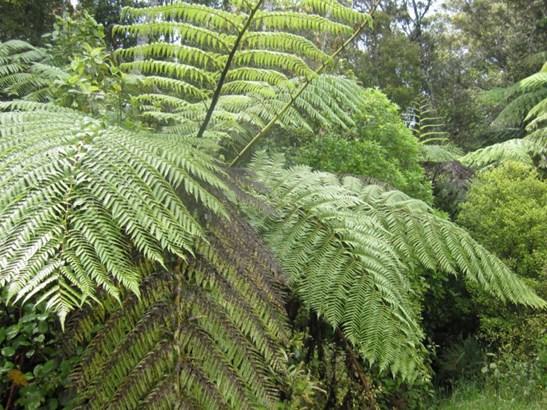 51 Stuart And Chapman Drive, Karoro, Grey - NZL (photo 4)