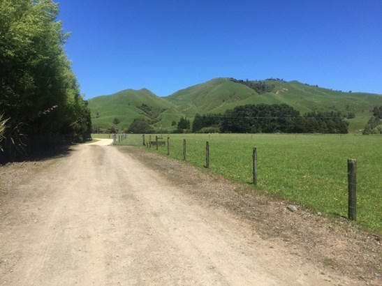 - State Highway 2, Eketahuna, Tararua - NZL (photo 2)