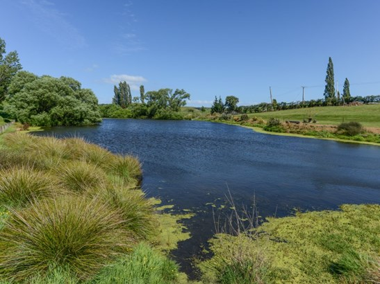 1127 Pourerere Road, Omakere, Central Hawkes Bay - NZL (photo 3)