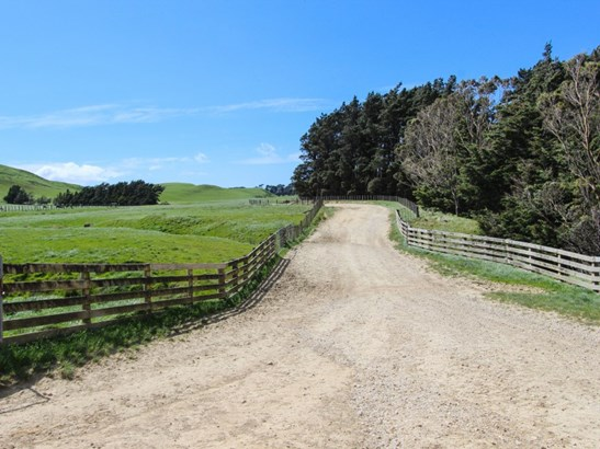 1530 Waihi Valley Road , Pongaroa, Tararua - NZL (photo 3)