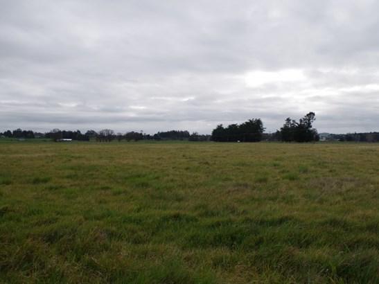 94 Farm Road, Waipukurau, Central Hawkes Bay - NZL (photo 5)